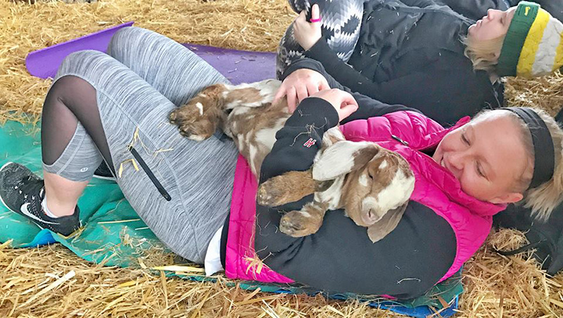 Goat Yoga, Facebook