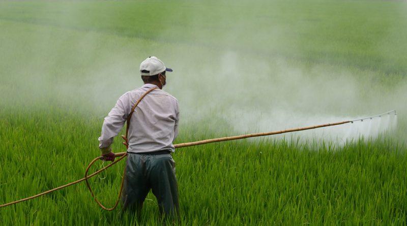 kolem pesticidů